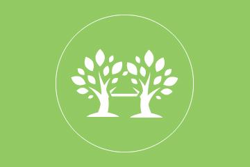treeBracing_Green