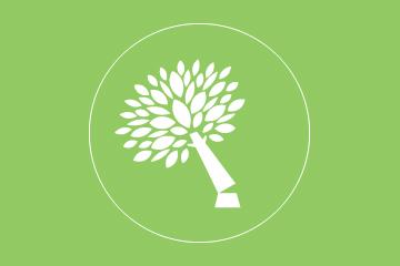treeFelling_Green
