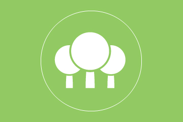 treeMeasureing_Green